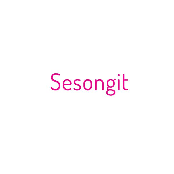 SESONGIT